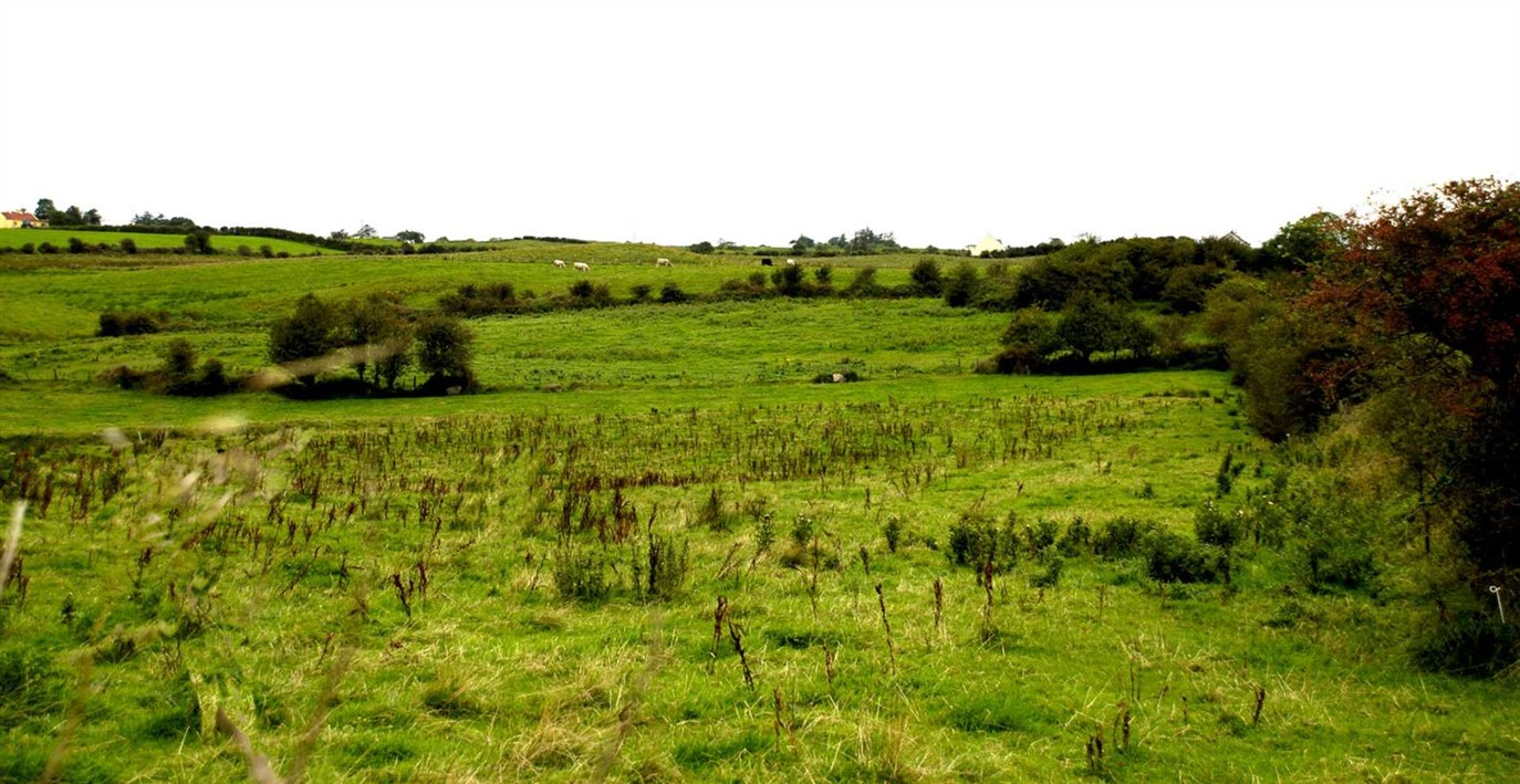 Carrowkelly, Ballina