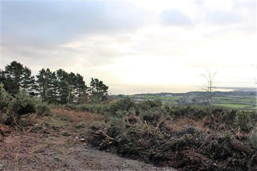 Tara Hill, Gorey, Co. Wexford