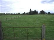 Land/Site sale & rent on  Ballysallagh, Hacketstown, Co Carlow, Hacketstown, Carlow