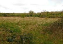 Curry, Castlepollard, Westmeath