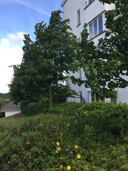 Sandyford View, Blackglen Road, Sandyford, Dublin 18