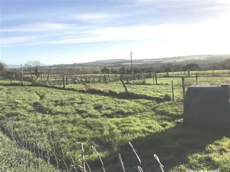 Newtown, Caherconlish, Co. Limerick
