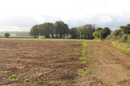 Tinnock Upper, Gorey, Co. Wexford