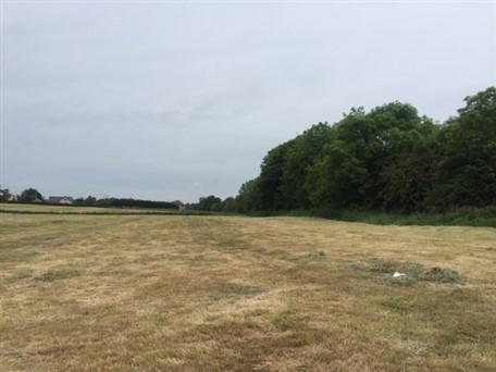 Ballinakill, Newtown, Kilcock, Co.Kildare – Approx 40.7 Acres