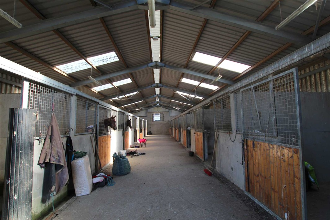 Mocklershill Stables, Cashel, Co Tipperary, E25 TV26