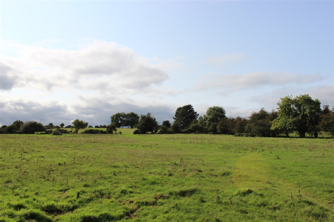 Grangebeg, Dunlavin, Co. Kildare – Approx. 69 acres (27.9 ha)