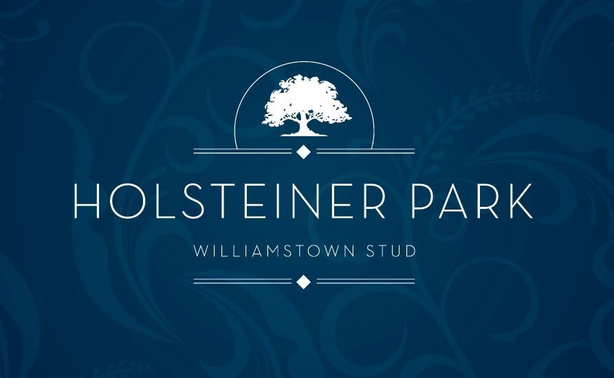 """The Galileo"" Holsteiner Park, Williamstown Stud, Clonee, Dublin 15"