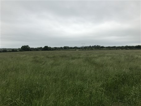 Baronrath, Straffan, Co.Kildare – C.34 Acres