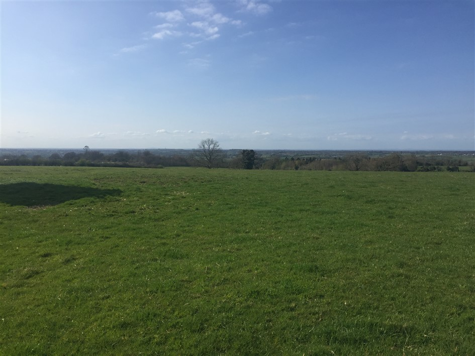 Cappagh, Enfield, Co. Meath – approx 31 acres
