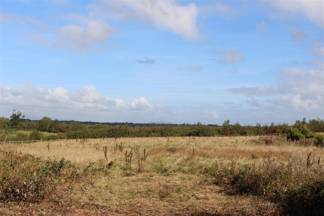 Ballywater Lower, Kilmuckridge, Co. Wexford