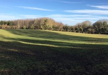 11.7 Hectares, Dryderstown, Delvin, Westmeath