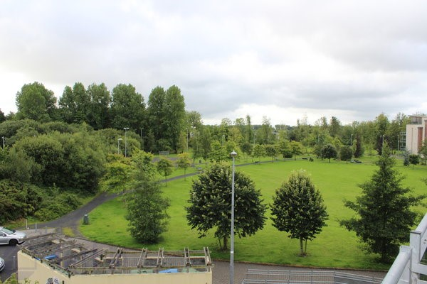 55 & 56 Bru na Sionna, Shannon, Co. Clare