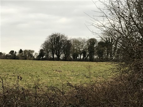 Aprox 17.5 acres Ballycarn, Enfield, Co. Meath