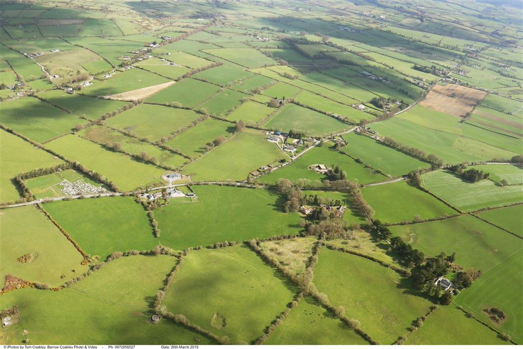 Boherboy, Dunlavin, Co. Wicklow – Approx. 31 acres (12.54ha) in lots, Wicklow