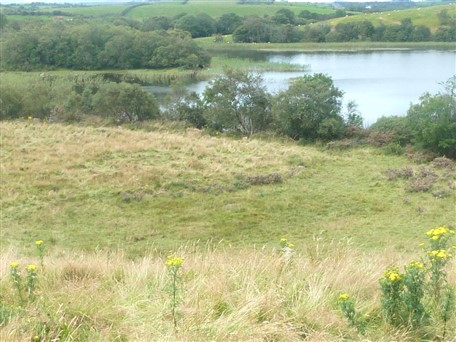 16 .51 Acres Non Residentail Land , Annagh, Castlebar, Co. Mayo