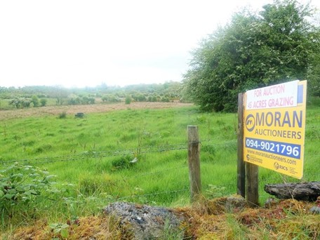 To Let By Public Auction C. 45 Acres Grazing Lands , Gallen,Straide, Foxford, Co. Mayo