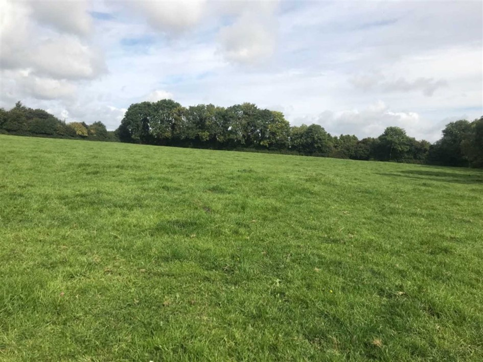 Ballybrack, Carbury, Co. Kildare W91 FX62 Guide Price €10000 per acre