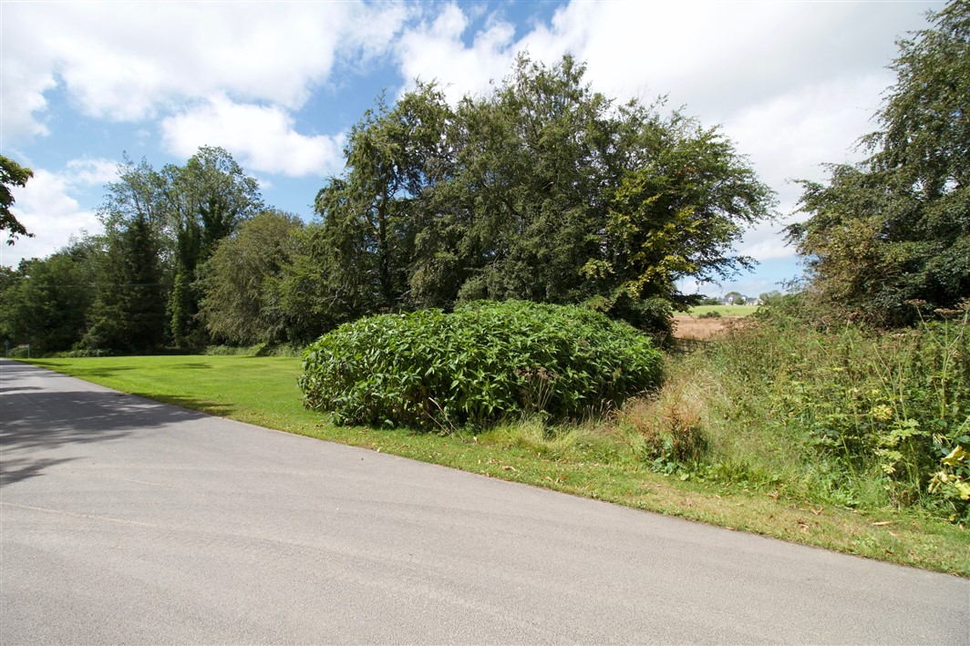 Shelton, Beech Road, Arklow, Co. Wicklow