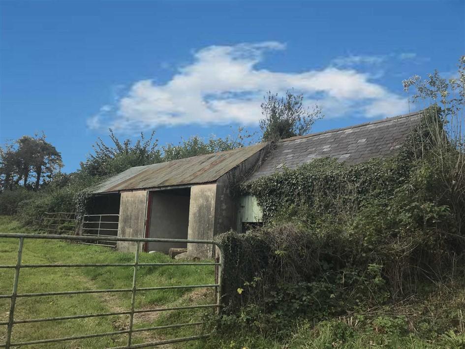 Ballingate, Carnew. Co Wicklow, Y14 W326