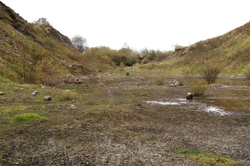 C. 6 acre Sandpit Quarry Carna, Charlestown, Co. Mayo