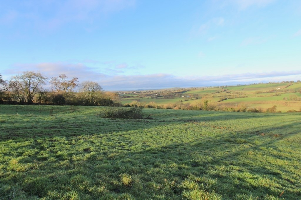 Land C. 21 Acres/ 8.5 Hectares, Lugatryna, Dunlavin, Co. Wicklow