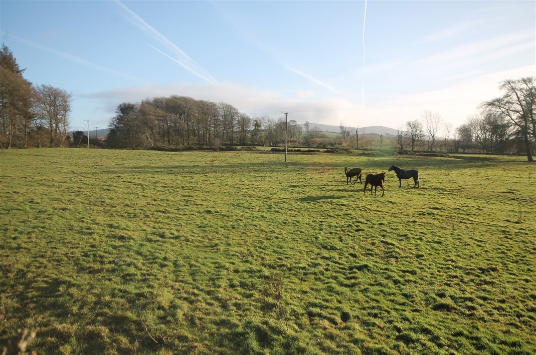 Land C. 17 Acres/6.88 Hectares The Lamb, Blessington, Co. Wicklow