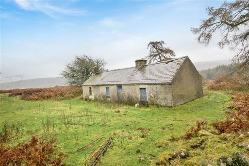Derelict Cottage on c. 34 Acres, Luglass, Hollywood, Co. Wicklow