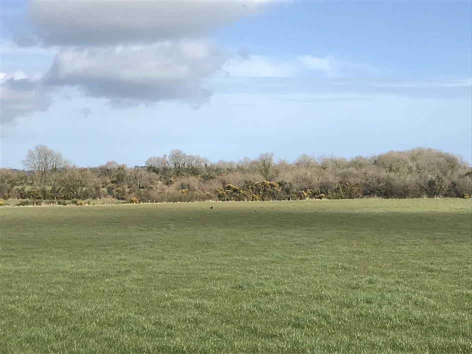 Garrynisk, Blackwater, Enniscorthy, Co. Wexford