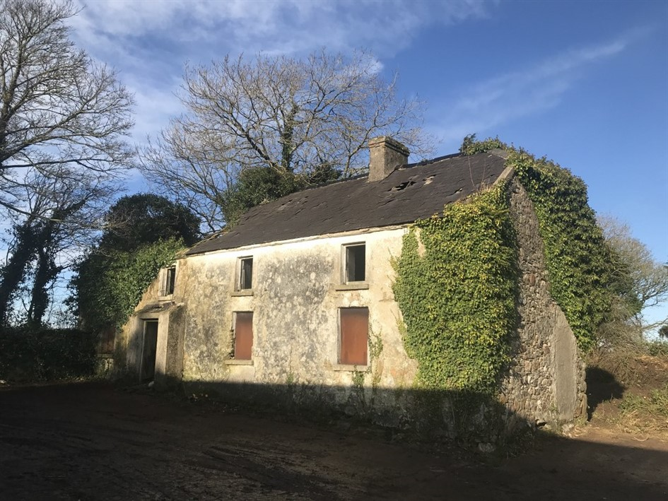 Dunmain, Campile, New Ross, Co. Wexford