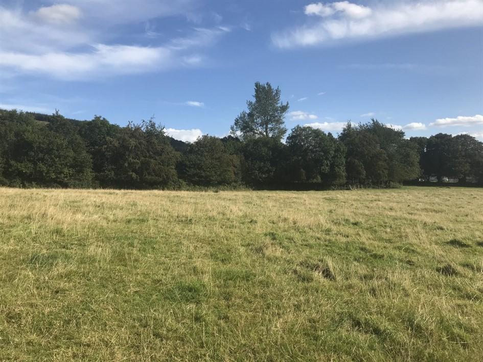 Newry & Moylisha, Clonegal, Enniscorthy, Co. Wexford