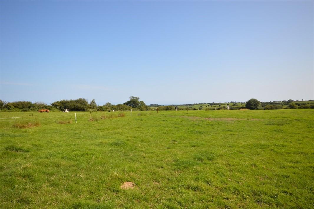 Ballylurkin, Kilmuckridge, Gorey, Co. Wexford Y25 V577