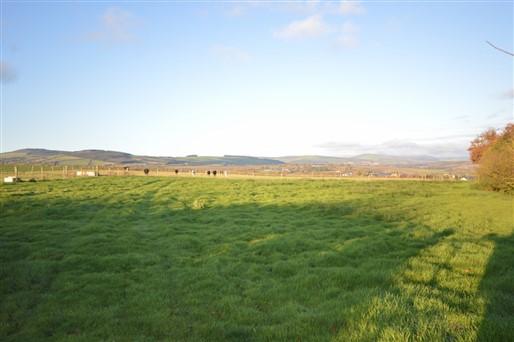 Ballingate Lower, Carnew, Co. Wicklow