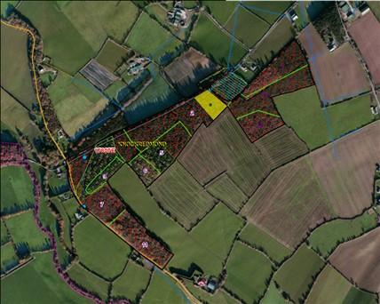 Knockredmond, Courtnacuddy, Enniscorthy, Co. Wexford