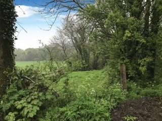 Garranstackle, Bree, Co. Wexford