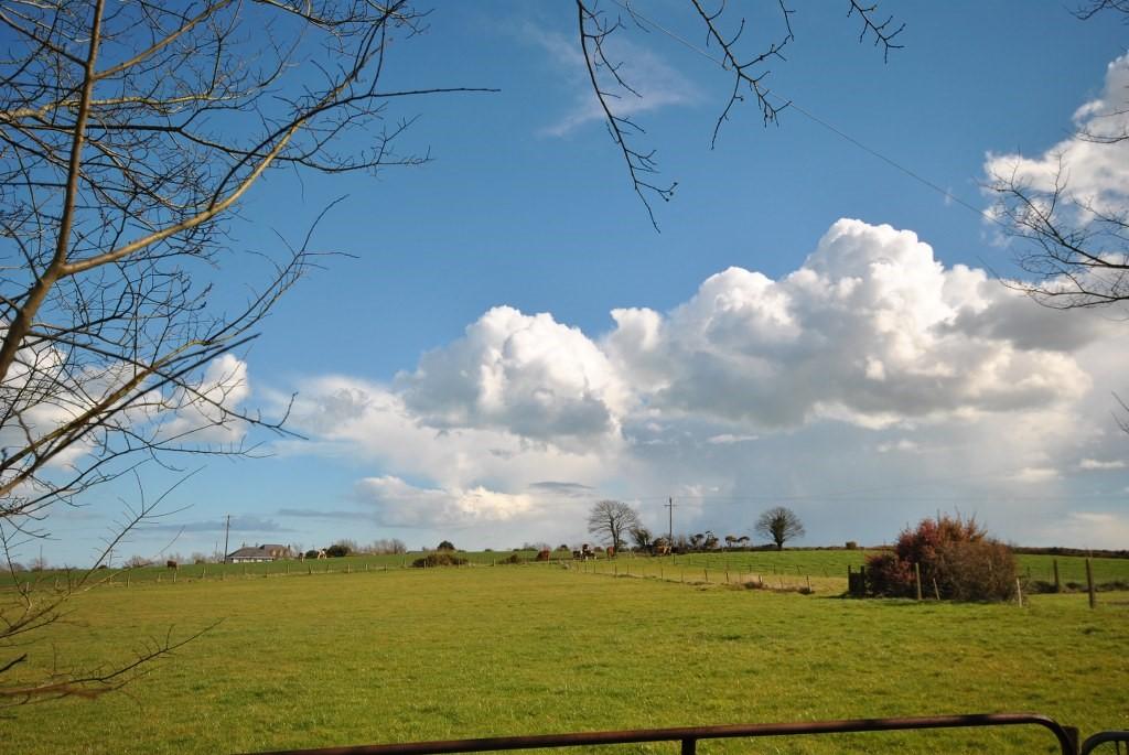 Curclogh Lane, The Ballagh, Enniscorthy, Co. Wexford