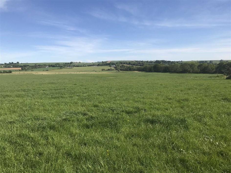 Ballyorley Lower, Ferns, Co. Wexford, Y21 HX28