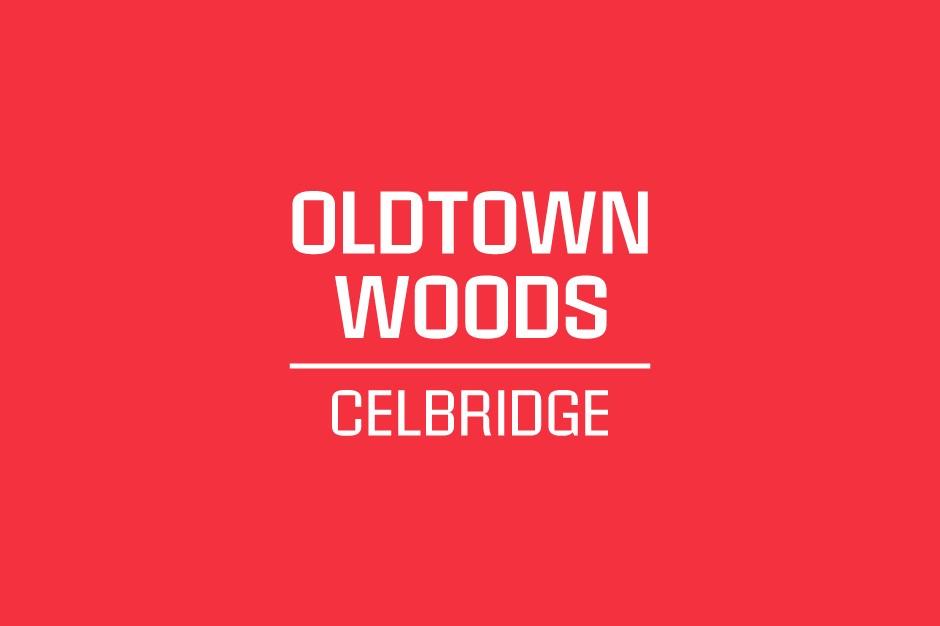 Oldtown Woods, Celbridge, Co. Kildare – 4 Bed Semi-Detached
