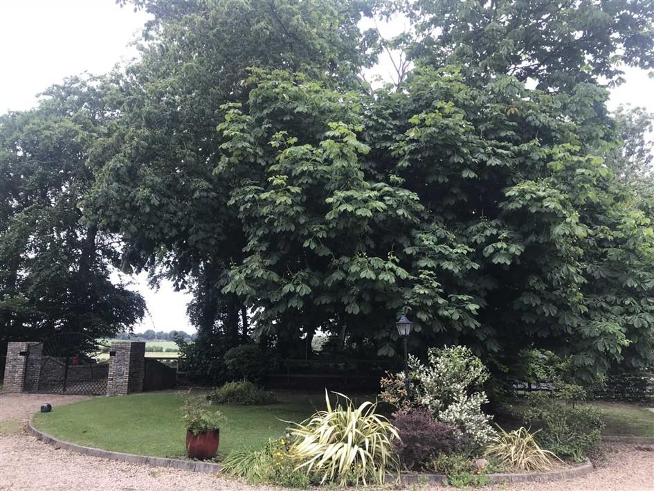 Chesnut Lodge, Closeland, Ballybrittas, R32 A3K7