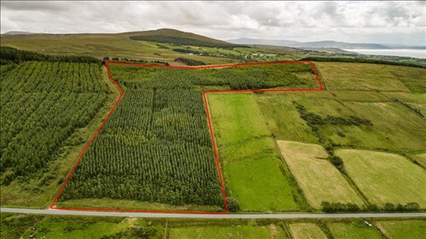 Tonduff(lot 4), Linsfort, Buncrana