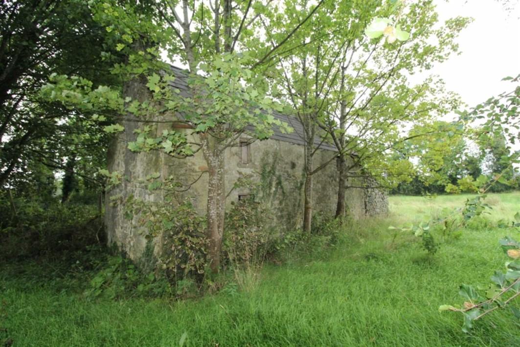 Hollygrove, Ballygar, Co. Galway