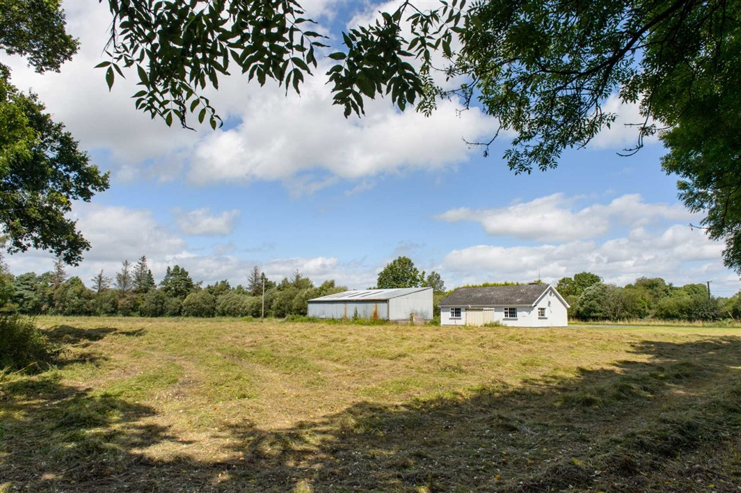 Borness, Mountmellick, Co. Offaly, R32 D5D1