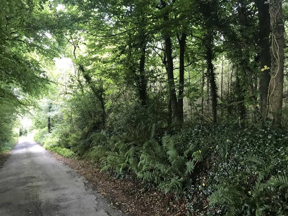 Rathfylane, Courtnacuddy, Enniscorthy, Co. Wexford