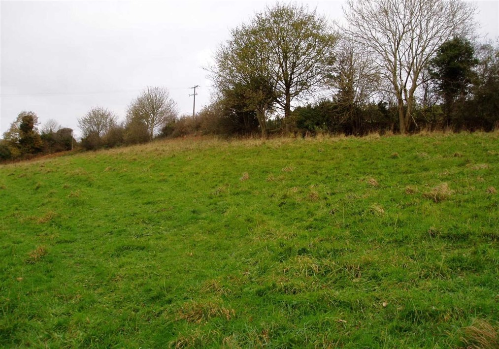 c. 1.85 acres (0.75 hectares) at Ballynultagh, Shillelagh, Co. Wicklow