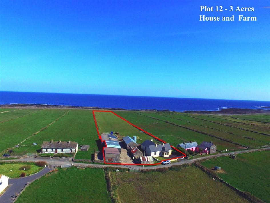 Estate of Anthony Walsh, Carrowmacbrien, Rathlee, Easkey, Co.Sligo