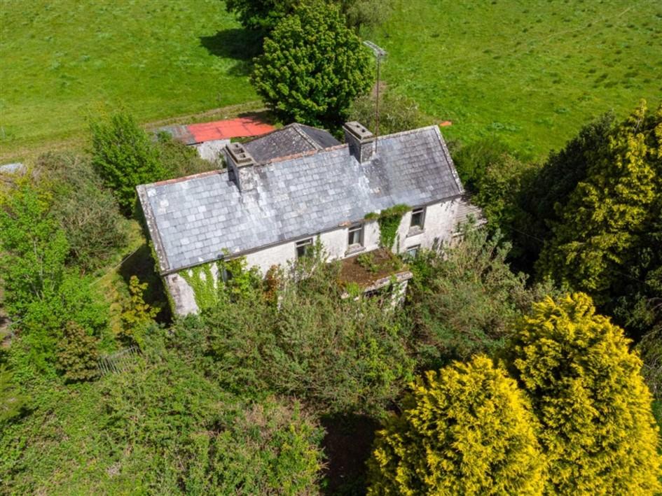Bellanacarrow, Athleague, Co. Roscommon, F42 E060