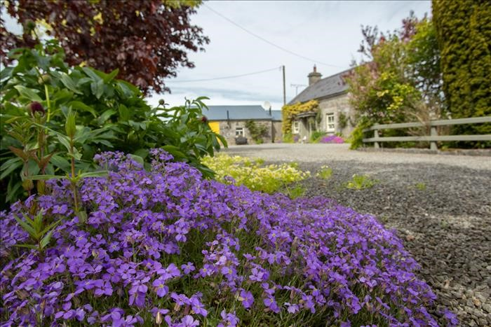 The Old Forge, Freighmore, Coole