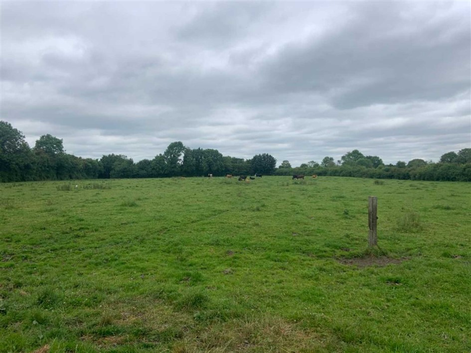 Killeenmore, Killeigh, Co. Offaly, R35 YH24