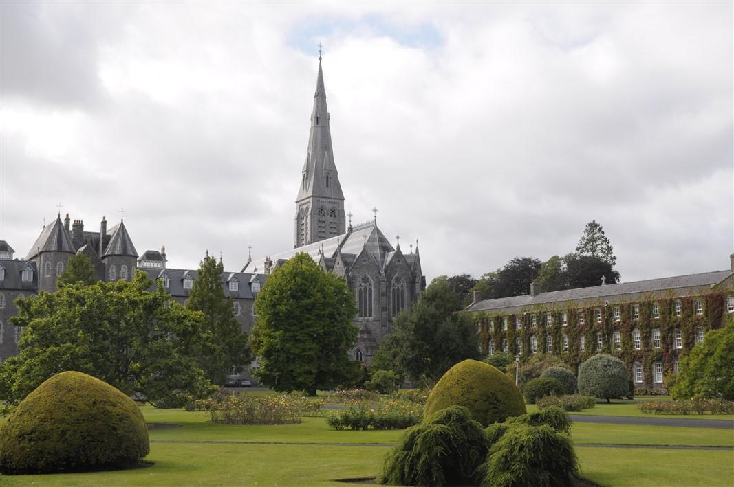 Farnan Wood – Downings North, Prosperous, Kildare