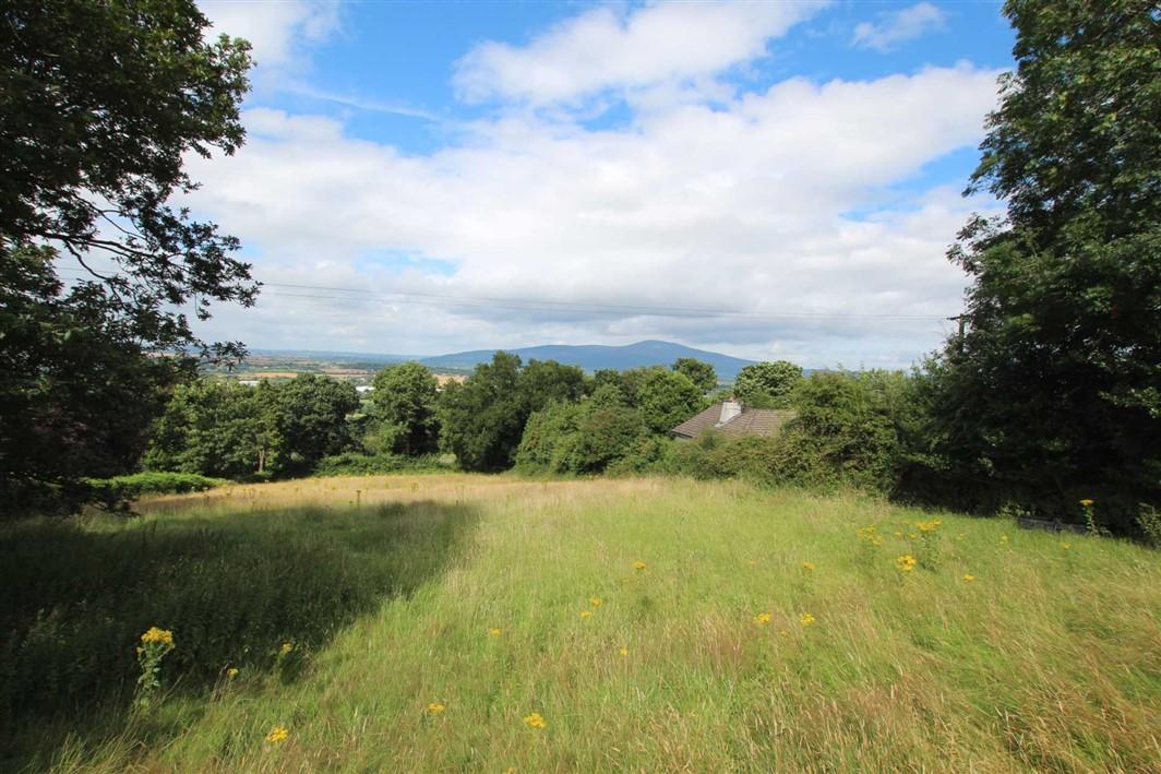 Site at Poulnagunogue, Clonmel