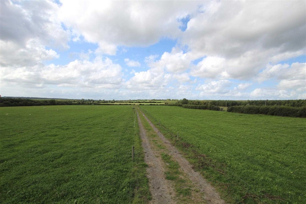 Lands at Coleman, Fethard